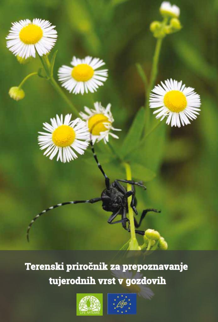 Terenski priročnik za prepoznavanje tujerodnih vrst v gozdovih