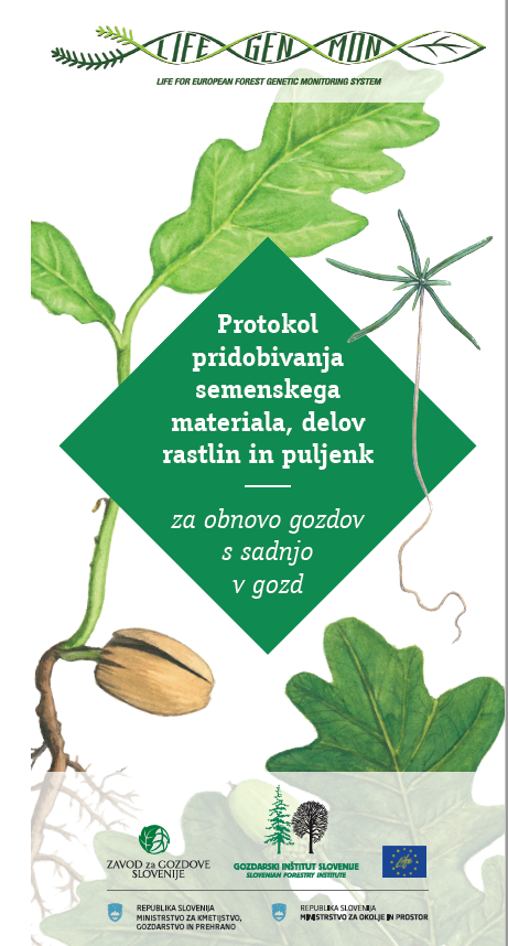 Protocol for the production of forest reproductive material
